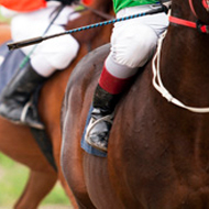 Equestrian governing body issues anti-doping guidance