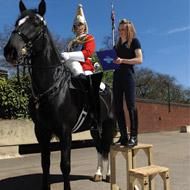 Lameness remains a major problem for UK horses