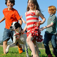 Pets make you healthier, survey reveals
