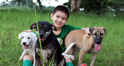Young boy opens rescue shelter in the Philippines