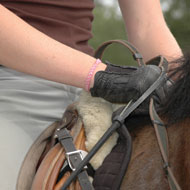 Cutting edge saddle research may benefit welfare