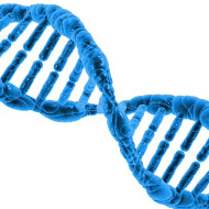 Researchers develop new DNA tracking technique