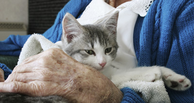 Celebrating the benefits of pets to the elderly