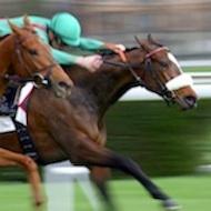 Racing industry cracks down on doping