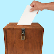 BVNA seeking council election candidates