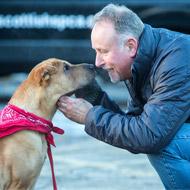 'Paddington Bear' dog to star at Canine Partners event