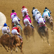 Racehorses are getting faster, study concludes
