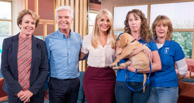 Guide dog pup joins ITV show