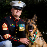 Heroic US Marine dog gets top medal