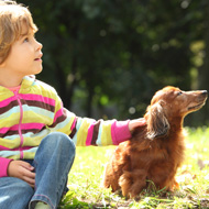 Educate children on animal welfare, petition urges