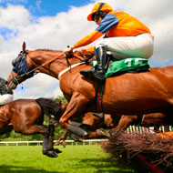 Experts discuss science of prediction to prevent racehorse injuries