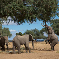 Cites meeting described as 'game changer'