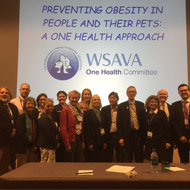 Call for 'One Health' approach to obesity