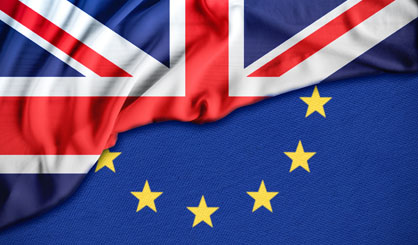 Government responds to vets' Brexit concerns