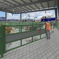 Airport opens new 'luxury' terminal for animals