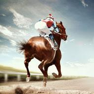 British protocol to maximise horse welfare