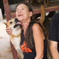 Soi Dog co-founder Gill Dalley dies following short battle with cancer