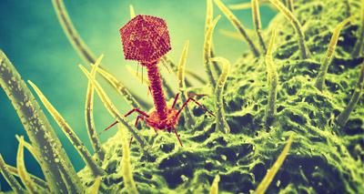 Breakthrough a 'game-changer' for antibiotics