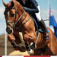 Jumping athlete found guilty of horse abuse