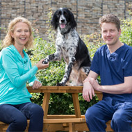 New technology saves dog's leg from amputation