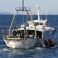 CSIRO creates tool to fight illegal fishing