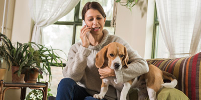 Many pet owners unable to identify an emergency