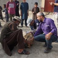 Rabies vaccination programme gets underway in Kabul