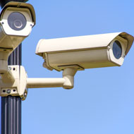 Defra commits to CCTV in slaughterhouses
