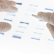 First veterinary forensics service launches