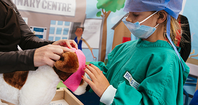 Raising awareness of veterinary careers