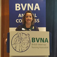 BVNA welcomes new president
