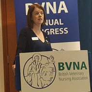 BVNA updates members on governance review