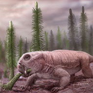Mass extinctions 'lead to disaster faunas'