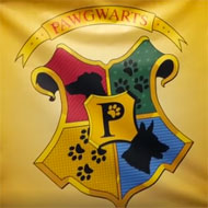 Rescue centre 'sorts' dogs into Hogwarts houses