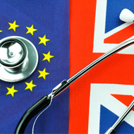 Brexit and the veterinary profession