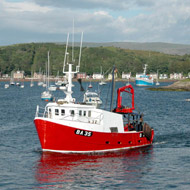 Government agrees on sustainable fishing quotas
