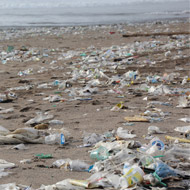 Countries commit to ocean pollution campaign