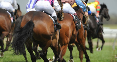 Racing authority amends rules on influenza vaccine