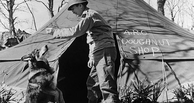War hero dog gets animal's Victoria Cross