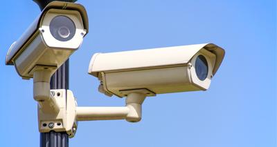Slaughterhouse CCTV law laid before parliament