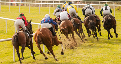 New method improves racehorse welfare after tendon injury
