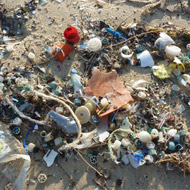 Think tank warns government not to rush plastic decisions
