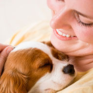 'Dog-speak' important for human-canine relationship