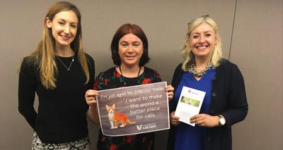Cat welfare declaration reaches 21,000 signatures