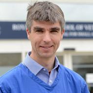 Canine specialist scoops prestigious Simon Award