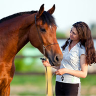 Horses 'read and remember' human facial expressions