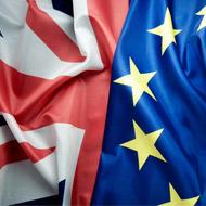BVA raises welfare concerns over Brexit plans