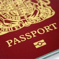 BVA raises concerns over migration recommendations
