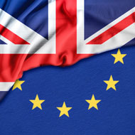 Brexit: Defra urged to boost veterinary capacity