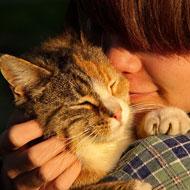 Empathy for animals linked to oxytocin gene